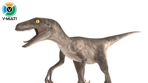 Velociraptor Rigged