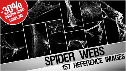 Spider Webs cobwebs - reference images pack