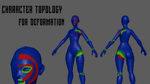 Character Topology for Deformation