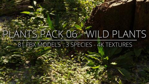 3D Plants Pack 06 - Wild Plants