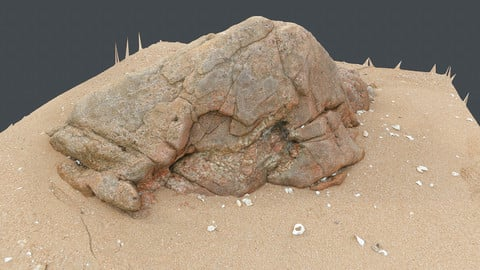 Photoscan_Beach Rock_0029_only HighPoly Mesh (16K Texture)