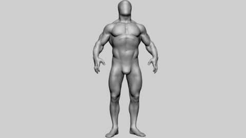 Base Male Anatomy v2