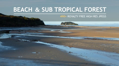 refs_BEACH & SUB TROPICAL FOREST