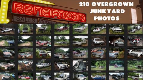 210 Overgrown Junkyard Photos (Reference/Photobash)