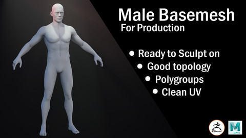 Male Basemesh for production