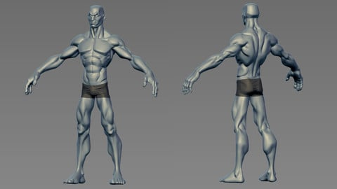 Re-usable male body