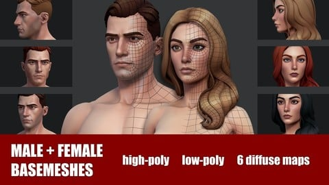 Male + Female Basemeshes