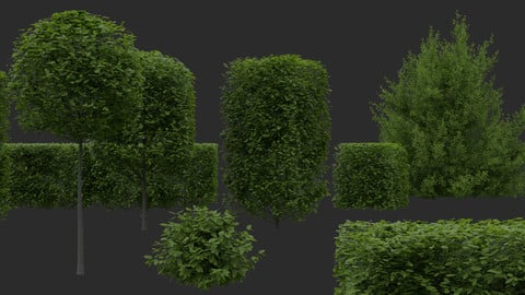 Hedges & Shrubs Pack