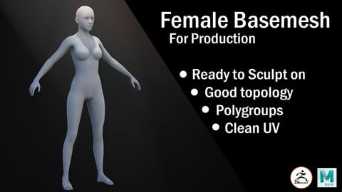 Female Basemesh for production