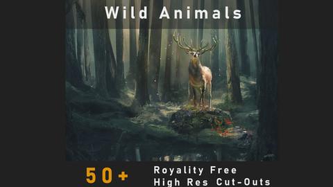 Wild Animals Cut-Outs + Breakdown Video