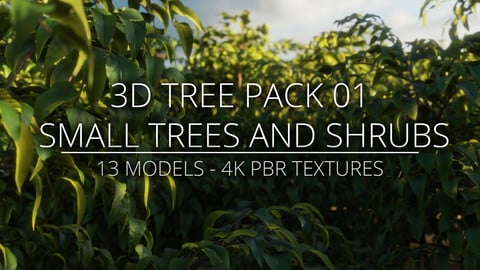 3D Tree Pack 01 - Small Trees and Shrubs