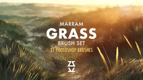 Marram Grass Brush Set