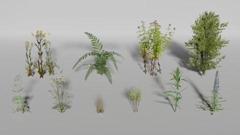Plants Pack