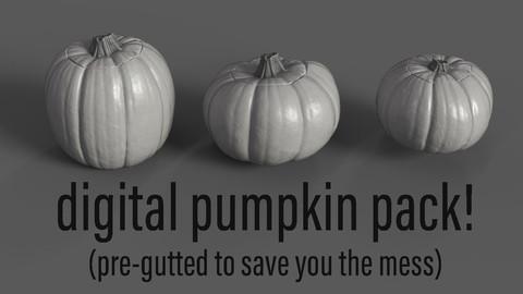 3D Pumpkin Models