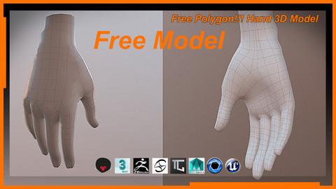 Free Polygon!!! Hand 3D Model