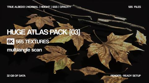 Huge 6K atlas pack | 565 textures| 16 bit  Photogrammetry