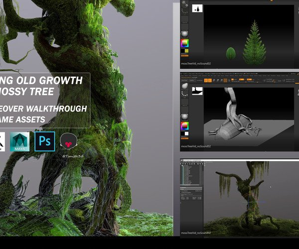 ArtStation - Creating Old Growth Mossy Tree: Tutorial and Game Assets | Resources