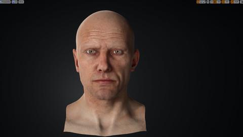 Male head. Game ready.