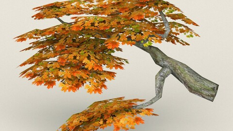Low Poly Maple Tree 08