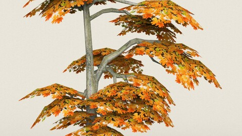 Low Poly Maple Tree 15