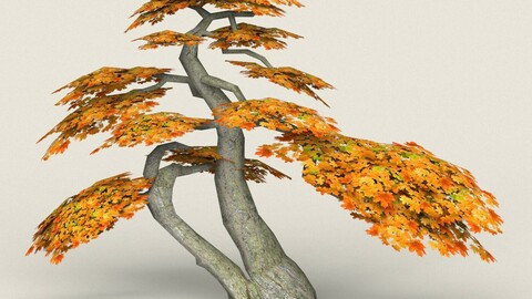 Low Poly Maple Tree 16