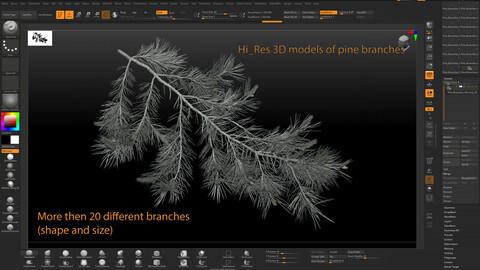 Pine Branches Hi-res 3D models