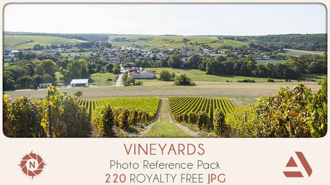 Photo Reference Pack: Vineyard