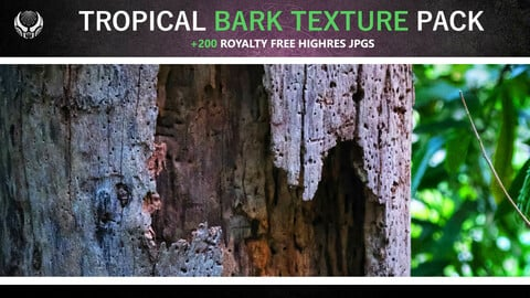 TROPICAL BARK TEXTURE PACK