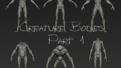 Creature Bodies Part 1