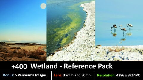 Wetland- Reference Pack