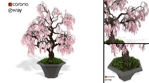 Decorative ornamental tree plant 03