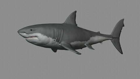 Great White Shark 3D Print