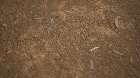 Tilia Dirt Texture 8K Photoscanned 2mx2m
