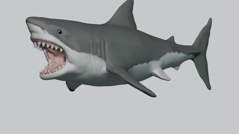 The Great White Shark 3D Print
