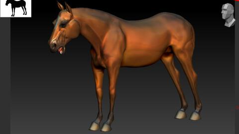 Horse 3D Asset