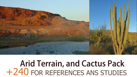 +240 Arid Terrain and Cactus Pack (ARUBA - Island ) - For references and studies