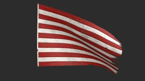 The Sons of Liberty Flag