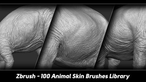Zbrush - 100 Animal Skin Brushes Library