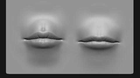Lip 2 Free VDM Brush and Highpoly Free 3D model