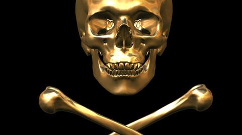 Skull & Crossbones 3D CG Kit