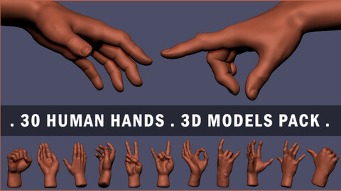 30 Human Hands 3d Models Pack