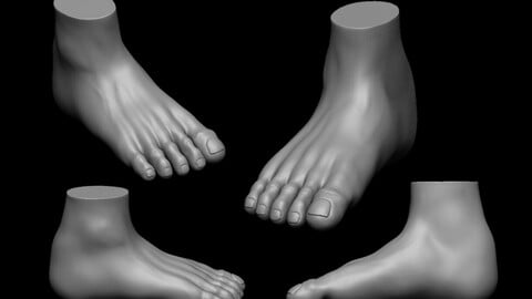 Free Foot highpoly