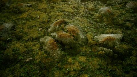 Forest Mossy Rocks - FREE sbsar