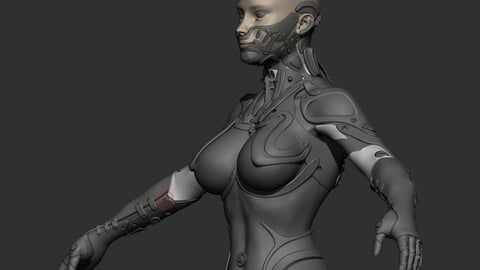 Robot Girl high poly model zbrush project and subtools 3D model