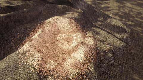Nodevember - Day 4 - Grain