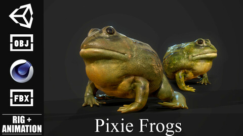 Pixie Frog - Game Ready