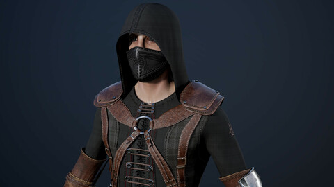 Assassin Secretive low poly game model