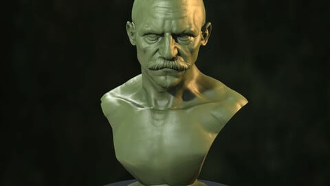 TTMinis 3Dprintable Bust [Pre-Supported]