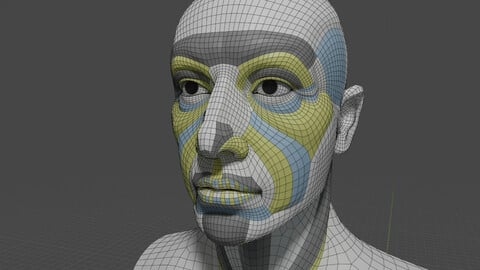 Generic head with anatomically based-topology