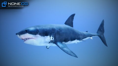 White Shark v2 Unity